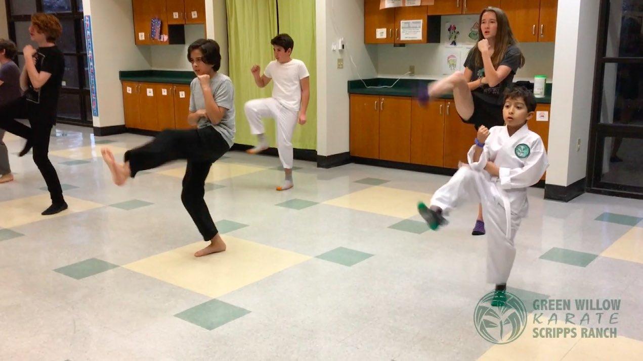 Scripps Ranch Karate Class San Diego